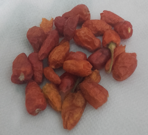 Hot red dry chilli
