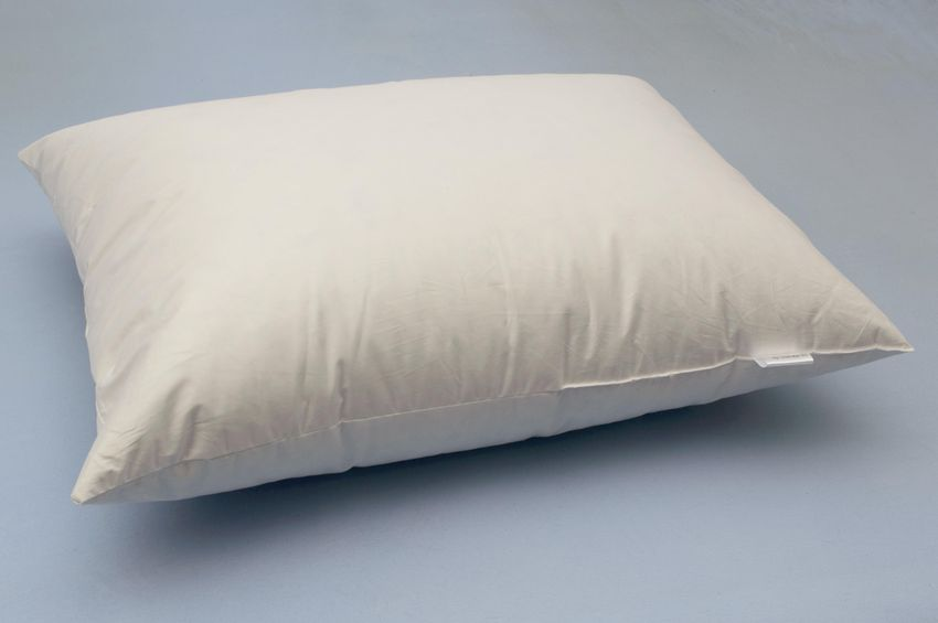 Goose down and feather mixture pillow